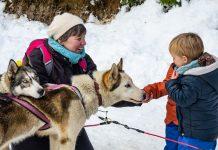 complicite chiens enfants oz en oisans
